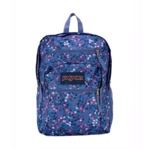 Jansport Purple Big Student BackPack